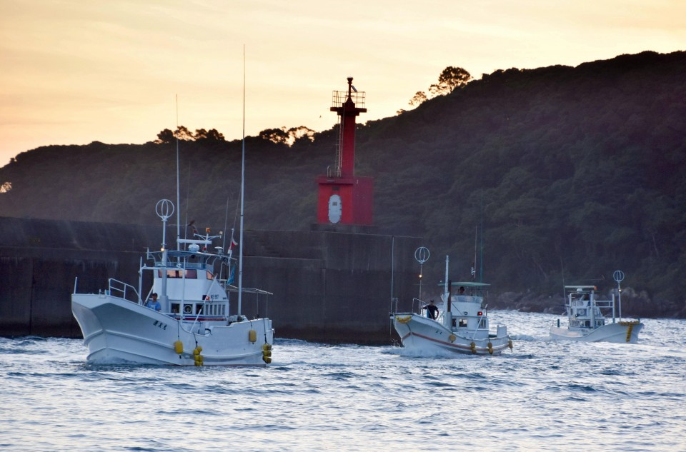 Japan's Whaling Commission withdrawal is a 'big deal'
