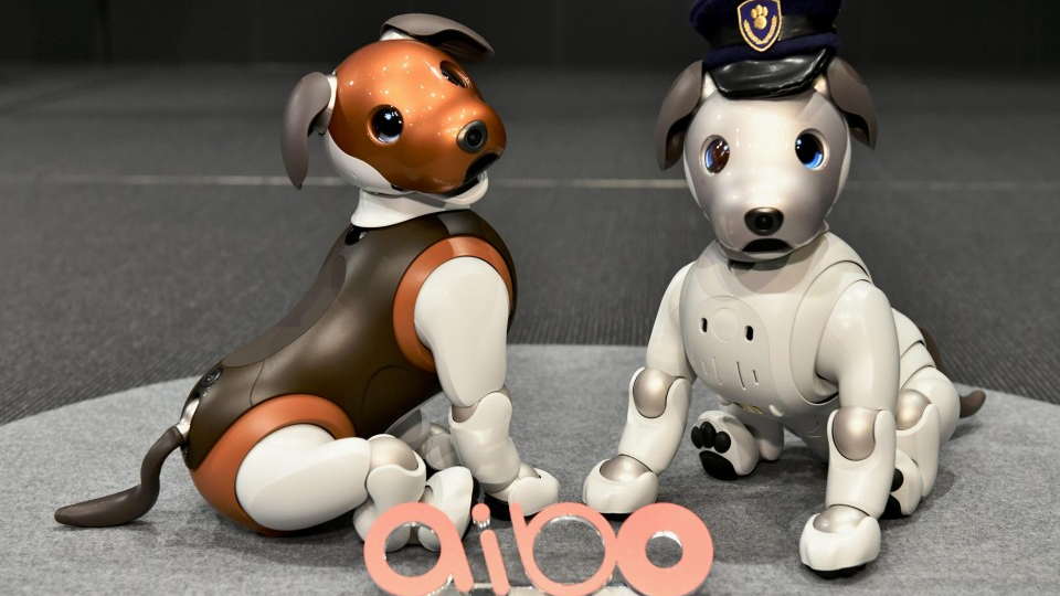Sony's Aibo robot dog to look after kids, elderly