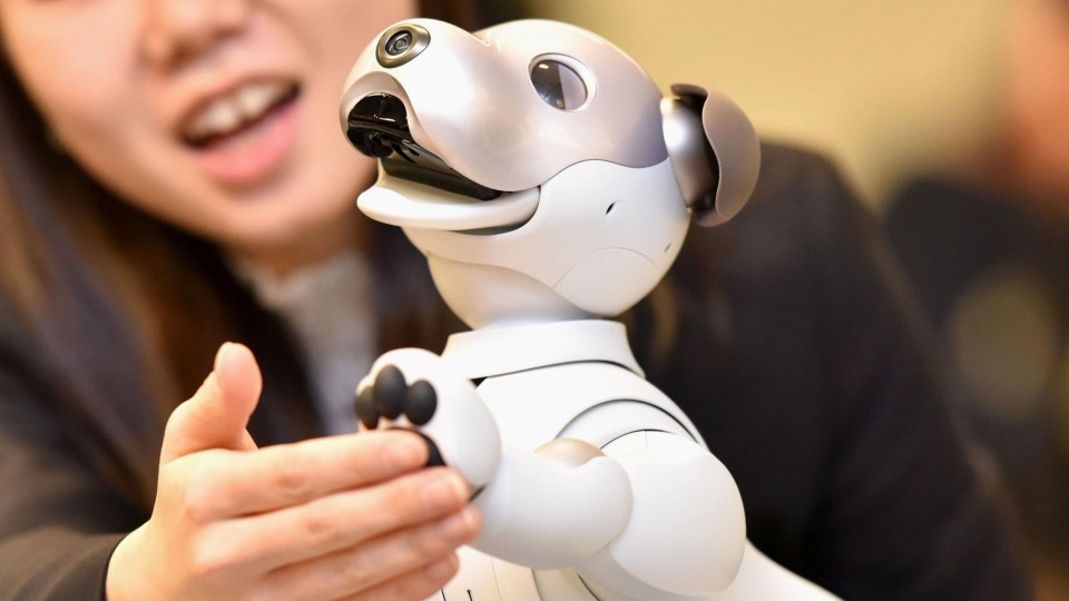 Sony robot dog owners demand longer after-purchase repair