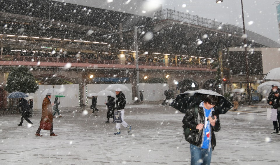 Snow falls in Tokyo, traffic disruption expected through January 23