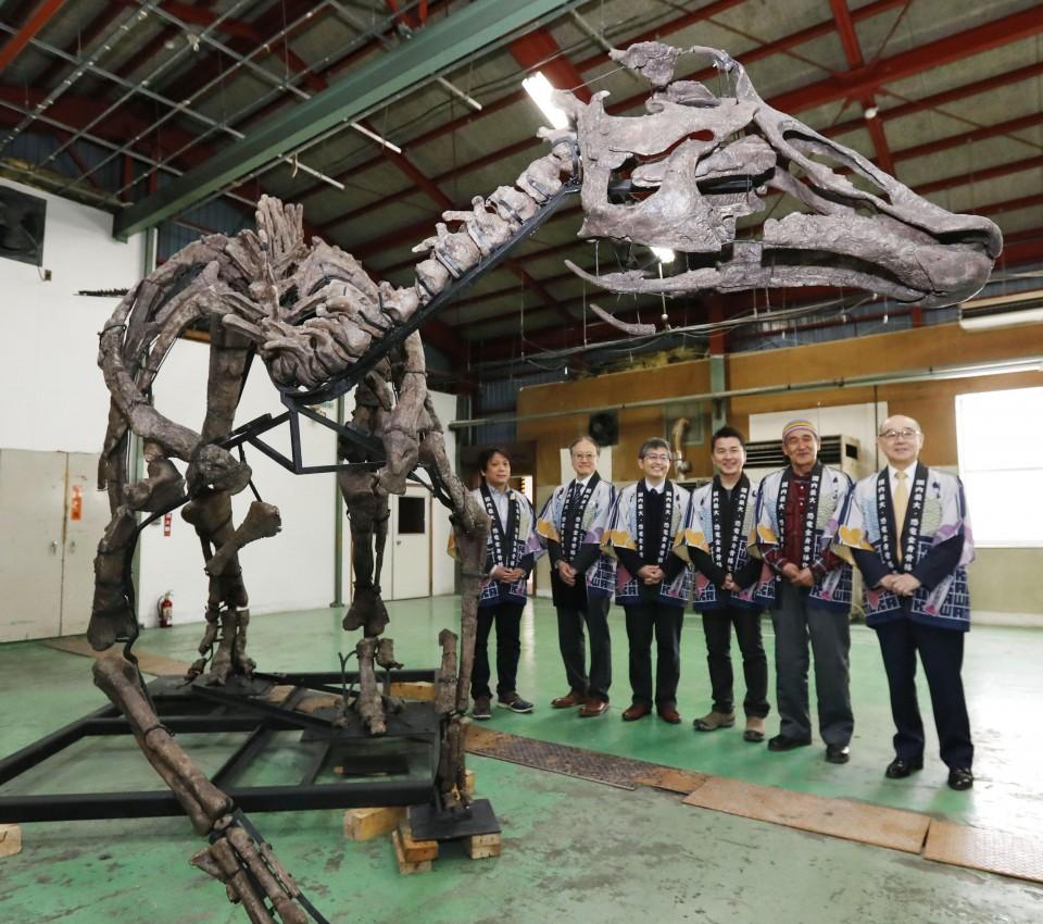 Japan's largest dinosaur skeleton restored as life-size replica