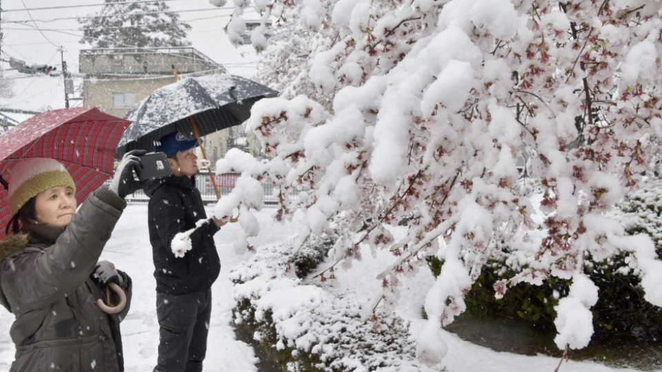 Tokyo commuters shiver as winter returns, mountain snow forecast