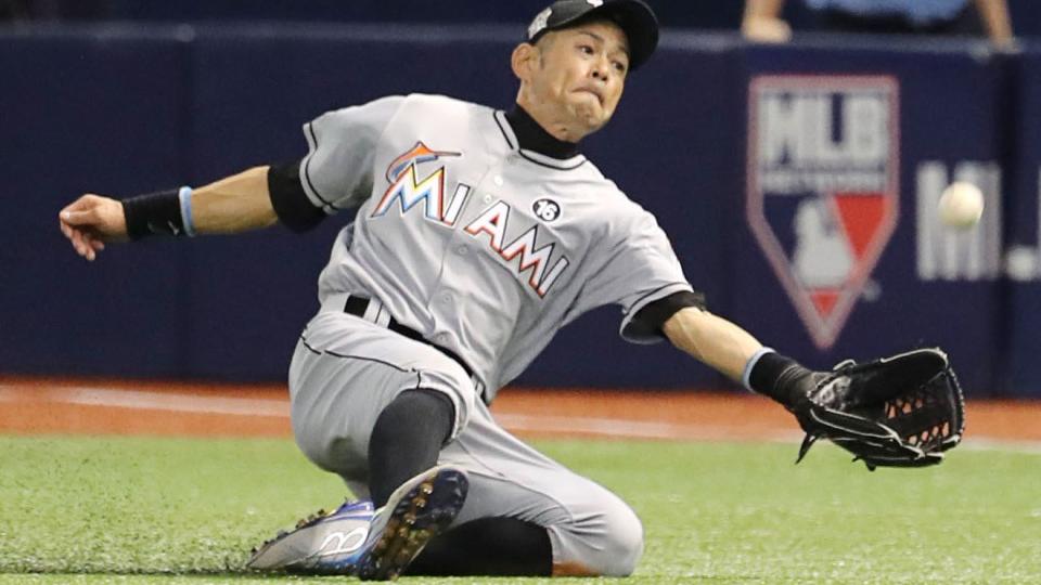 Baseball: Researcher names wasp variety after Ichiro